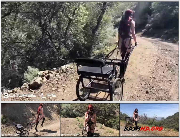 Pony Cart Walk - BondageLife - 2020 - HD