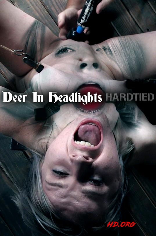 Oct 11, 2017: Deer In Headlights - Bambi Belle - HardTied - 2017 - HD