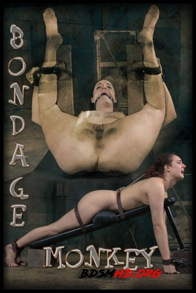 Bondage Monkey Part 3 – BDSM, Bondage - 2020 - HD