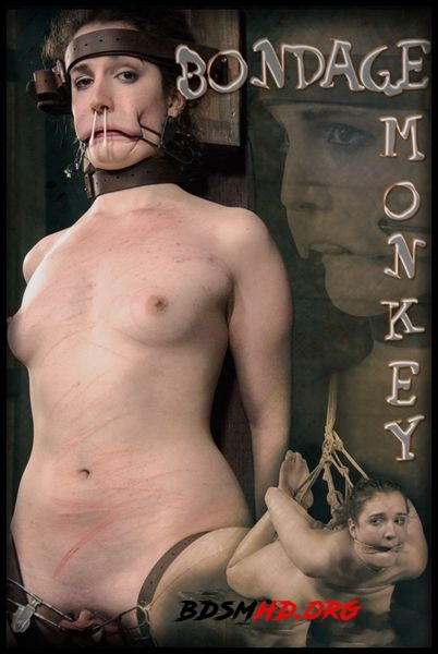 Bondage Monkey Part 2 - 2020 - HD