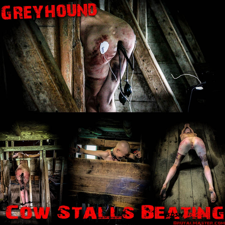 Greyhound - BrutalMaster - 2020 - FullHD
