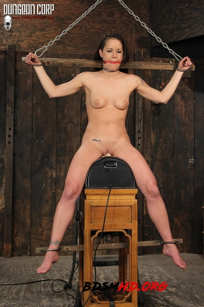 Whipped on the Sybian - Sadie Dawson - Strict Restraint - 2020 - HD