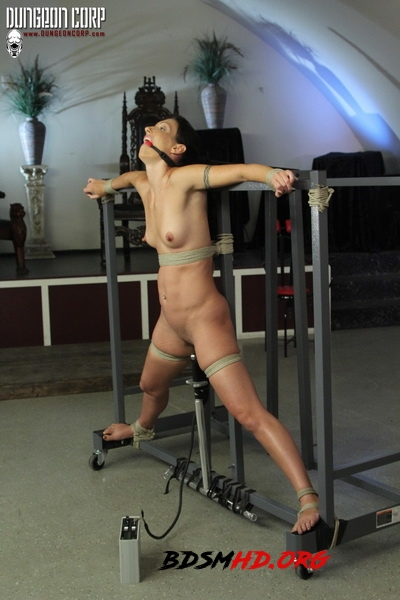 Every Master Needs One – - Wenona - Society SM - 2020 - HD