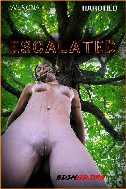 Escalated | - Wenona - Hardtied - 2020 - HD